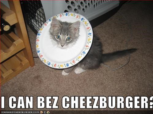 Cheezburger Image 1600057088