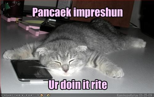 doin it rite,impression,lolcats,look a like,pancake