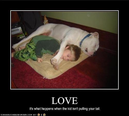 bulldog cuddles human kids love nap sleeping - 1602616064