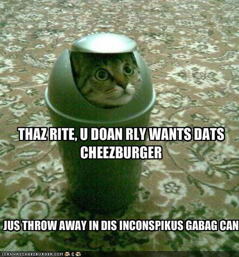cheezburger,disguise,hungry,lolcats,plotting,trashcan