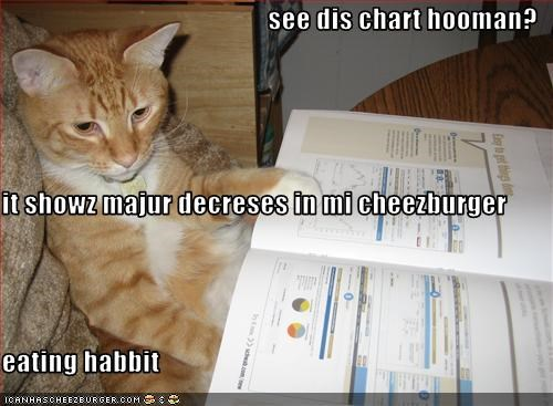 Cheezburger Image 1605797632