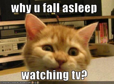 Why U Fall Asleep Watching Tv Cheezburger Funny Memes Funny