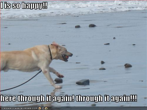 I is so happy!!  here through it again! through it again!!!