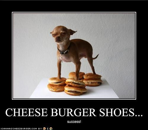 Cheezburger Image 1614697216