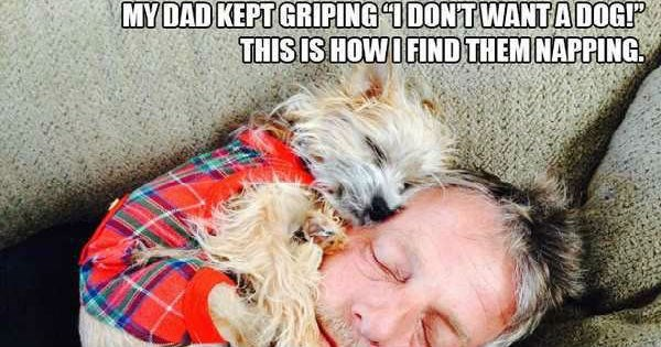 dogs,pets,dad,family,caption