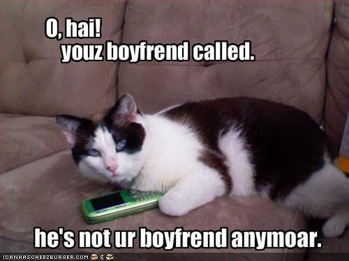 boyfriend,mischief,o hai,phone