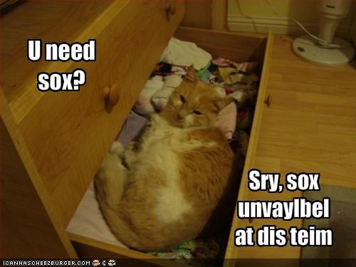annoying,drawers,ginger,lolcats,socks