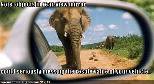 car lolelephants mirror scary - 1617963776