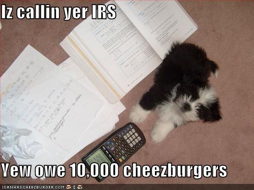 Cheezburger Image 1621498112