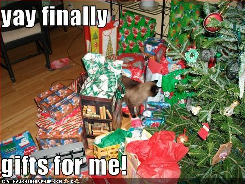 Yay Presents Meme – #happy #christmas #excited #new #animated.