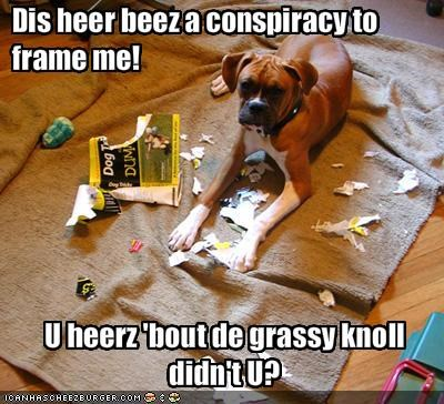 Cheezburger Image 1623301376