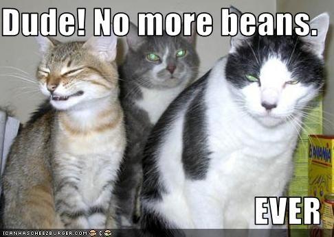 Dude! No more beans.  EVER