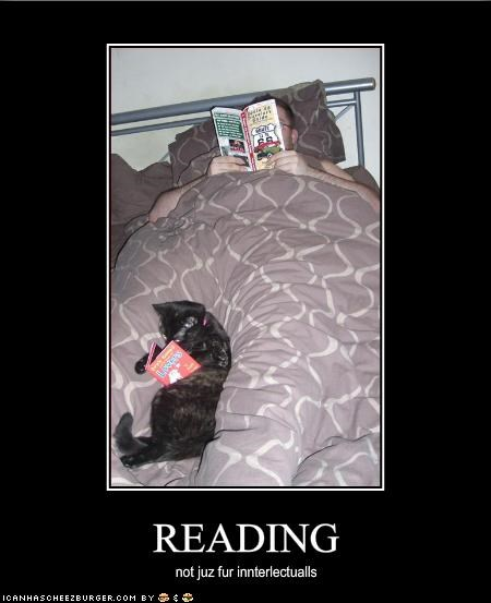 bed book reading smart - 1628406528