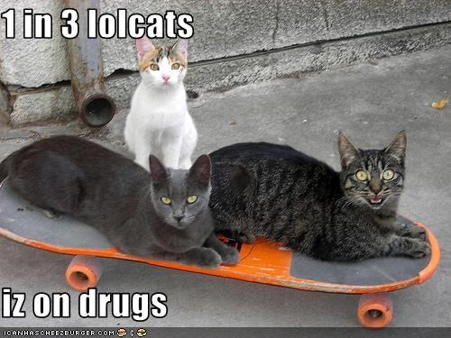 drugs,skateboard