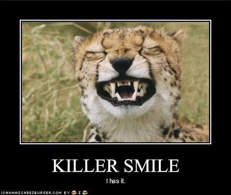 cute lolcheetahs murder smiling - 1634845440