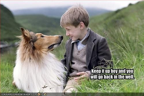 collie kids lassie - 1641582336