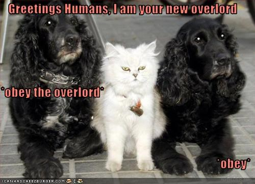 Greetings Humans, I am your new overlord *obey the overlord* *obey*
