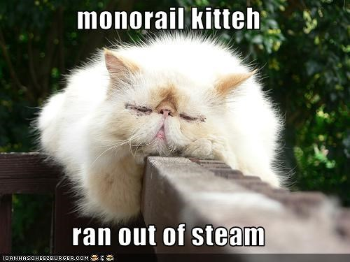 monorail kitteh ran out of steam cheezburger funny memes funny pictures cheezburger