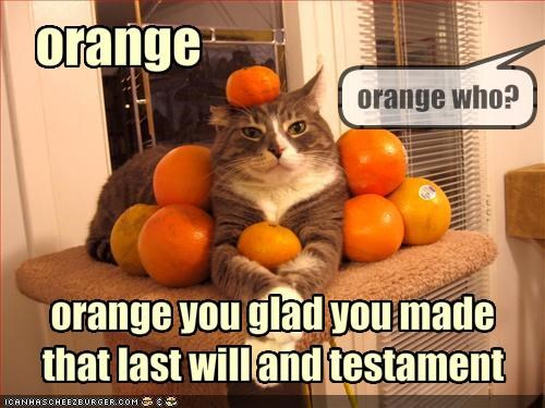 Orange You Glad You Made That Last Will And Testament Cheezburger
