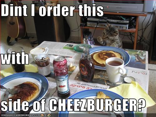 Cheezburger Image 1654805760