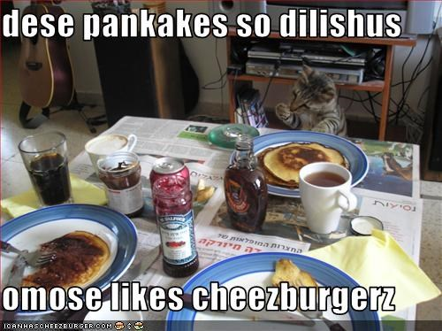 Cheezburger Image 1655531776