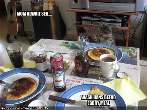 breakfast clean fud nom nom nom wash - 1659004160