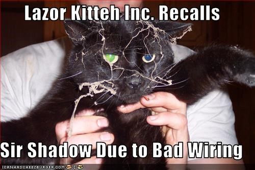 Lazor Kitteh Inc Recalls Sir Shadow Due To Bad Wiring Cheezburger Funny Memes Funny Pictures