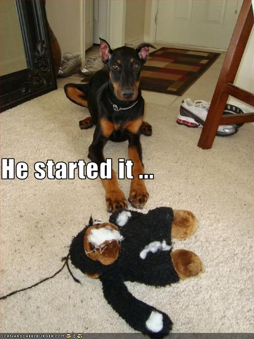 destruction,doberman pinscher,living room,mirror,monkey,rug,stuffed animal