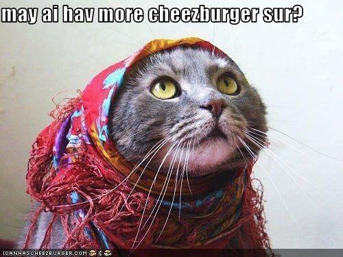 Cheezburger Image 1664072448