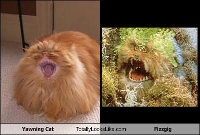 Yawning Cat Totally Looks Like Fizzgig