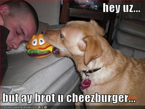 Cheezburger Image 1670271232