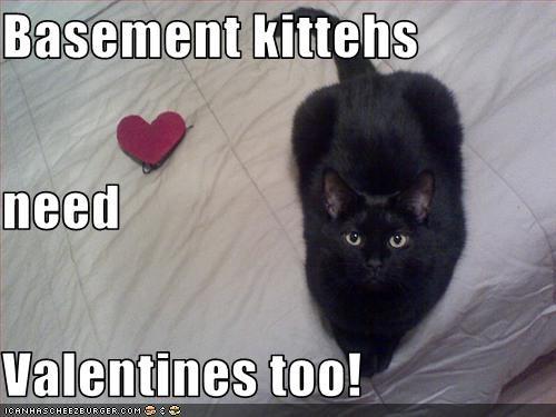 basement cat love valentines - 1676711168