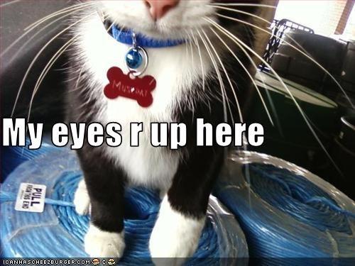 eyes hint rude - 1677753600