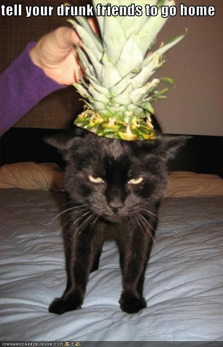 angry costume drunk pineapple - 1678464768