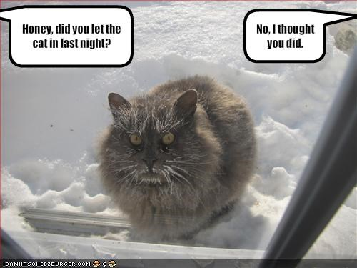 angry cold oops outside snow - 1683845376