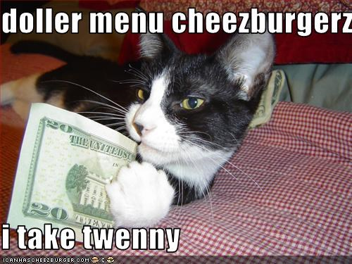 Cheezburger Image 1686853888