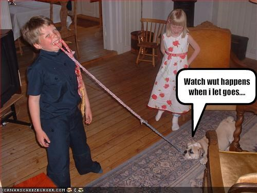 bulldog dentist indoors kids living room playing - 1687495936