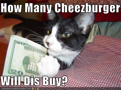 Cheezburger Image 1691467008