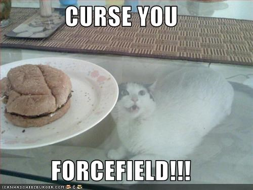 cheezburger,forcefield,frustrated