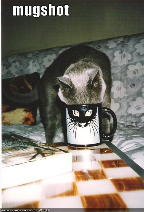 drinking mug mugshot - 1691862784
