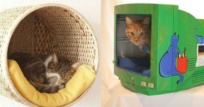 pets crafts DIY beds Cats - 1695237