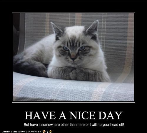 Have A Nice Day Cheezburger Funny Memes Funny Pictures