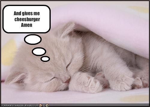 Cheezburger Image 1696730368