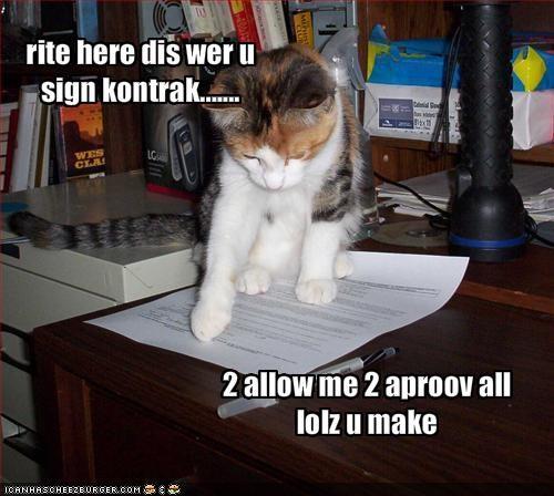 rite here dis wer u sign kontrak.......