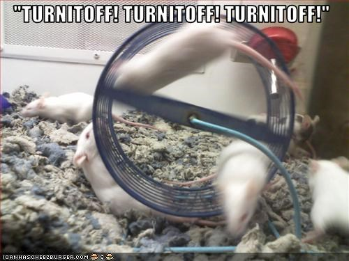 fast,lolmice,wheel
