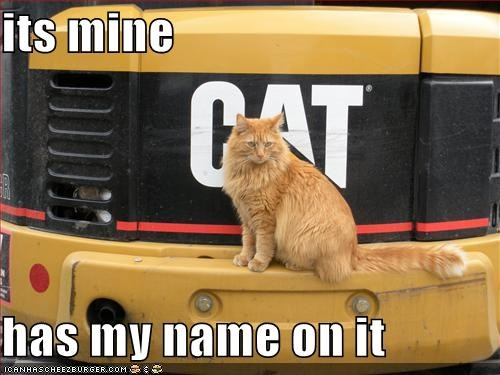 construction,ginger,truck