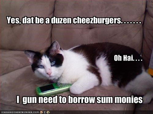 Cheezburger Image 1710703360