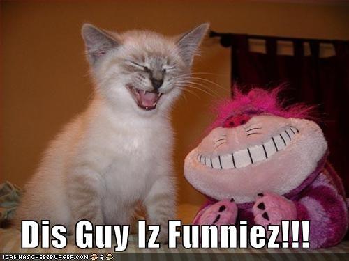 funny kitten stuffed animal - 1714819328
