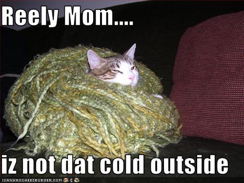 cold costume momcat outside - 1714879744