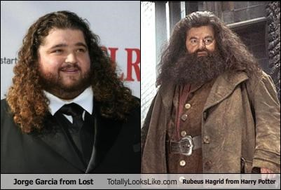 Harry Potter,Jorge Garcia,lost,movies,TV
